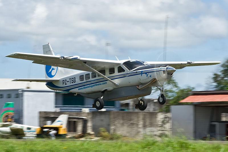 BlueWingAirlines